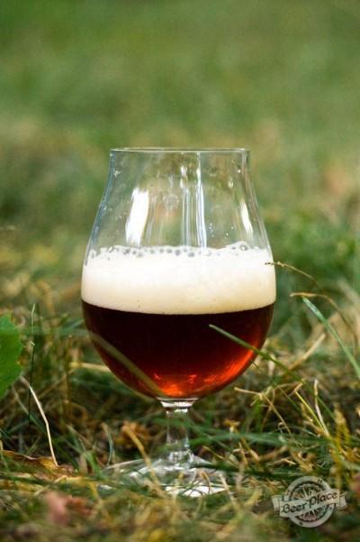 Дегустация пива Брудершафт