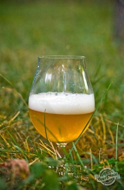 Дегустация пива Толстый Фраер светлое