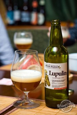Дегустация пива Lupulin American IPA от White Rabbit Art Brewery