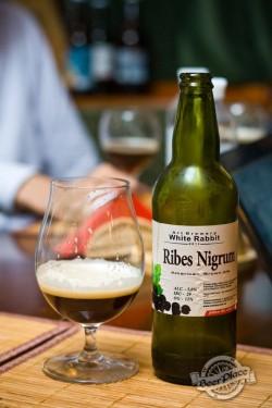 Дегустация пива Ribes Nigrum от White Rabbit Art Brewery