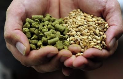 CRAFT Beer Store приглашает на публичную варку пива