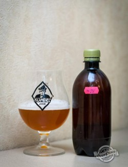 Дегустация пива Burgomistr Golden Ale