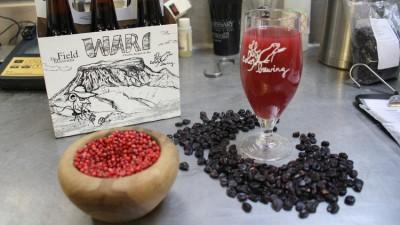 Пиво по древним рецептам