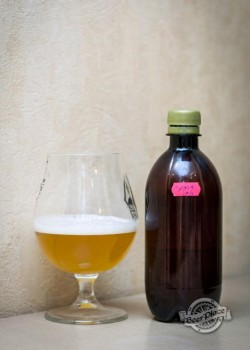 Дегустация пива Шале Имбирное