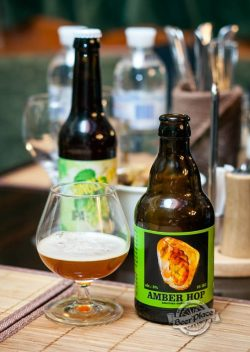 Дегустация пива Amber Hop от Mad Brewlads