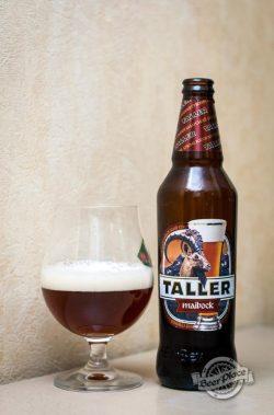 Дегустация пива Taller Maibock