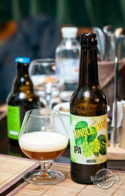Дегустация пива Woodstone Mosaic IPA Single Hop