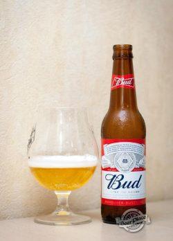 Дегустация пива Bud (Украина)