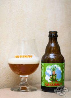 Дегустация пива Calumet от Mad Brewlads