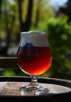 Обновленный American Pale Ale от Пивного сада