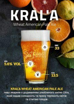 Bohemian Pilsner, Glow и Kral'a — новые сорта от Hummel