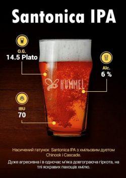 Акция и новое пиво в VIDRO Craft Beer & Kitchen