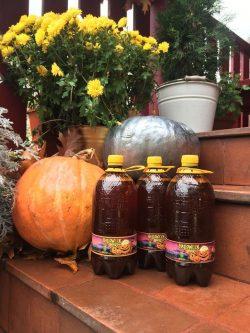Halloweenbeer - новый сорт из Чернигова