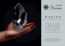 Morion - новый сорт линейки FDB Premium из Днепра