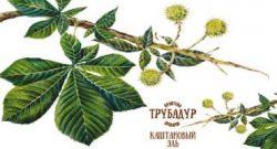 Chestnut Ale - новый сорт от пивоварни Трубадур