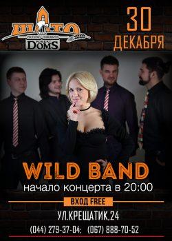 Кавер-группа Wild band в Шато Robert Doms