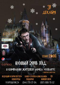 Новый год в Шато Robert Doms