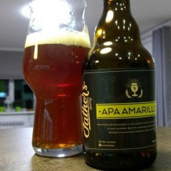 Дегустация пива APA Amarillo от гастропаба Father