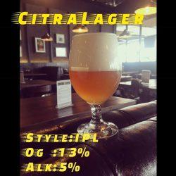 Bitter Vitter и Citra lager - новинки от киевской мини-пивоварни PĚST