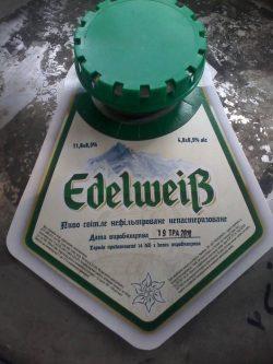 Edelweiß - новый сорт из Сватово