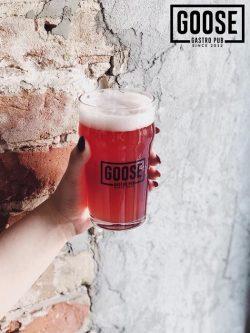 Hybrid berry ale, сидр и выходные в Goose Gastro Pub