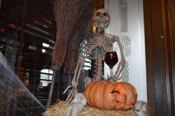 Pumpkin ale – новый сезонный сорт от To Dublin