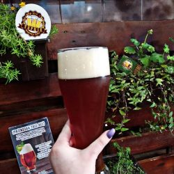 ІРА – новый сорт от Фабрика пива Терція