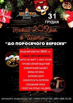 Новий рік в Шато Robert Doms