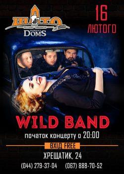 Гурт Wild Band та футбол в Шато Robert Doms
