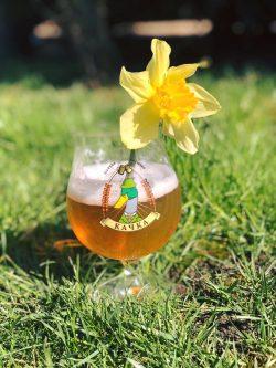 Весенний Блонд Эль – новый сорт от Качка Brewery