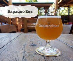Барацко ель - новинка из Ужгорода