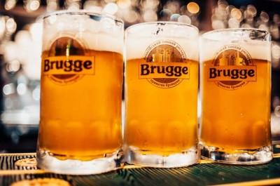 Blanche de Brugge - новый сорт от Brugge