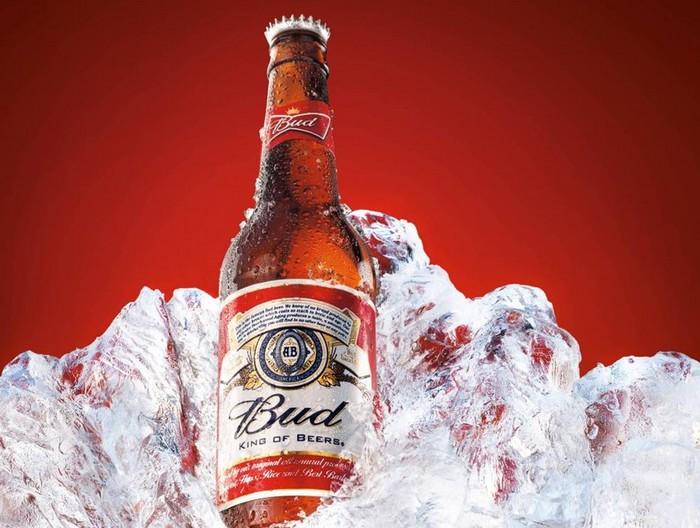 http://beerplace.com.ua/wp-content/uploads/Bud.jpg