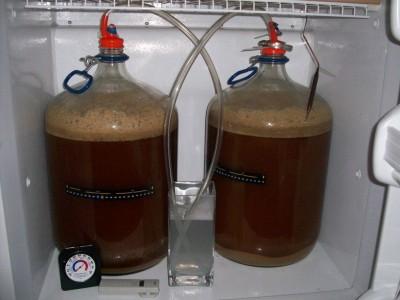 Во всех штатах США теперь можно варить пиво дома