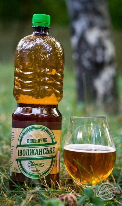 Дегустация пива Іволжанське Пшеничне