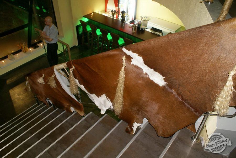 Обзор пивного клуба Рыжая Корова. Коровьи шкуры на лестнице