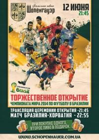 Открытие Чемпионата мира в Шопенгауэре
