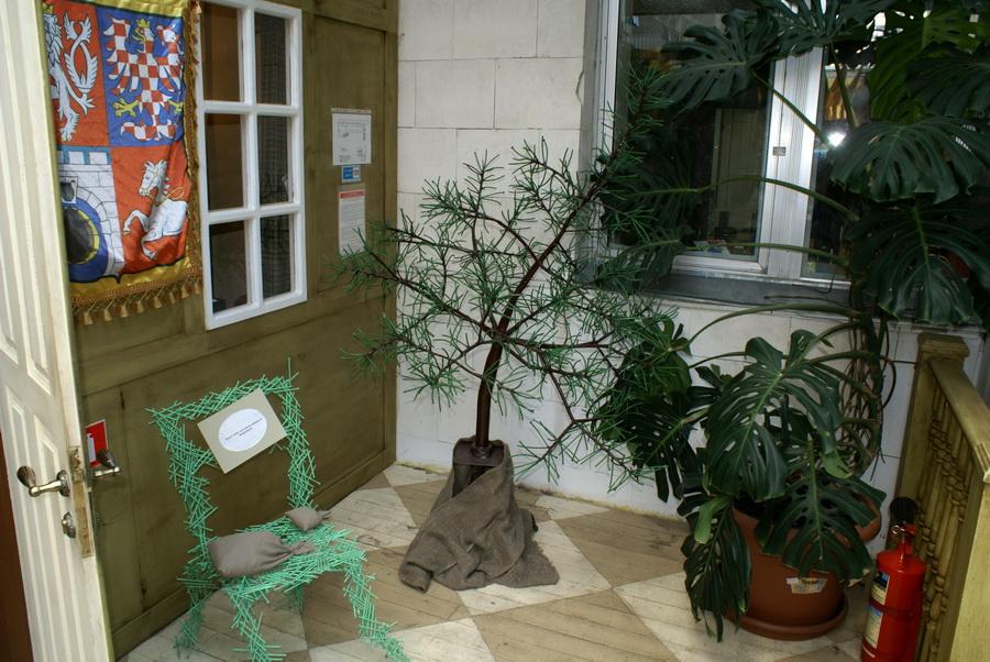 Чешский ресторан Старомак. Вечнозеленое дерево