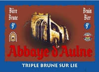 Дегустация пива Abbaye d'Aulne Triple brune