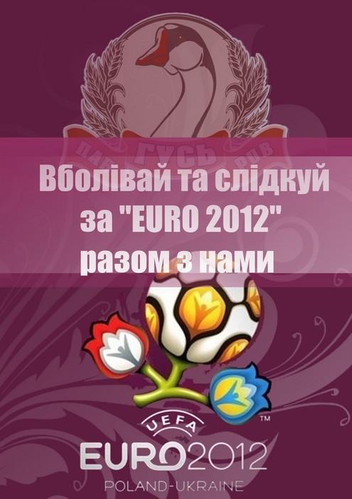 Матчи Евро-2012 в пабе Гусь