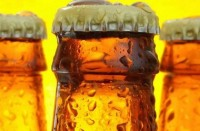В Нидерландах алкоголики начали работать за пиво