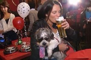 Mucky Pup. Бар для собак в Лондоне