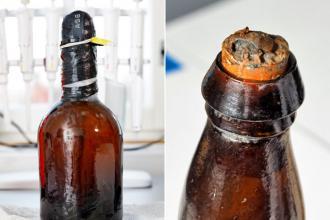 Вот так выглядит древнейшее пиво на данный момент