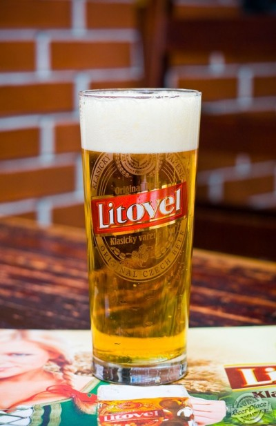 Дегустация пива Litovel Premium