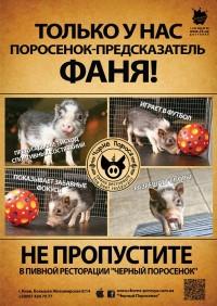 Поросенок-предсказатель в Черном Поросенке