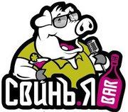 Свинья бар. Киев